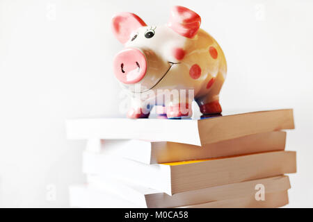 economy and finance - savings in a piggy bank for education and school fee - Stock Photo