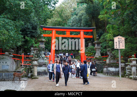 Wild deer and people crossing a red torii in Kasuga-taisha in Nara, a major tourism destination in Japan - Stock Photo