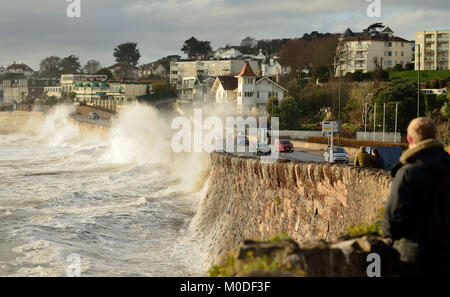 People watching a stormy high tide at Torquay from behind the sea wall. - Stock Photo