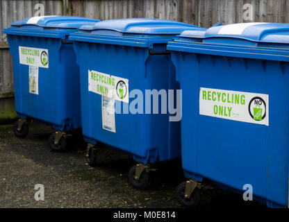 Three blue recycling wheelie bins standing in a line - Stock Photo