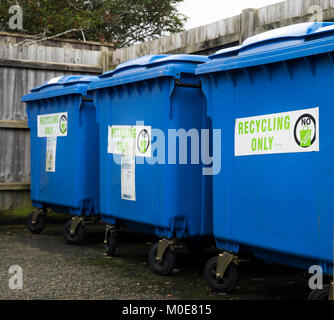 Three large blue wheeled recycling bins standing in a line with labels - Stock Photo