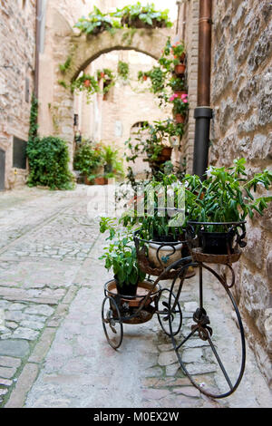 Spello, Perugia, Umbria, green heart of Italy. Vintage bike with with plants in an alley, typical of the center - Stock Photo