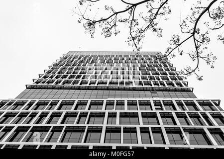 Bottom view of business buildings skyscraper, black and white. - Stock Photo