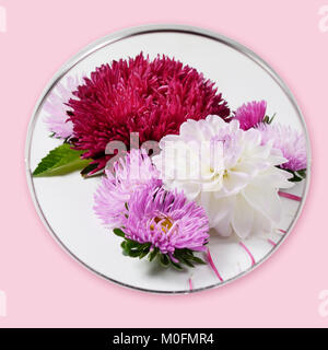 Creative autumn flowers background. Dahlias and chrysanthemums reflected in a round mirror. - Stock Photo