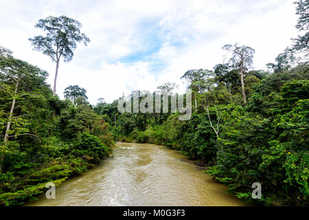 View of the Danum River, Danum Valley Conservation Area, Borneo, Sabah, Malaysia - Stock Photo