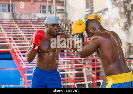 Boxers training at  Rafael Trejo Boxing Gym in Havana, Cuba - Stock Photo