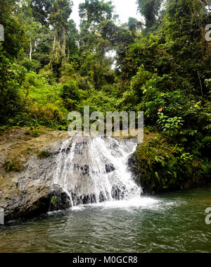 Waterfall in primary rainforest at Danum Valley Conservation Area, Borneo, Sabah, Malaysia - Stock Photo