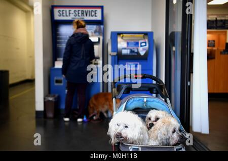 San Francisco, USA. 22nd Jan, 2018. A customer stands in front of a self-service machine at a post office which - Stock Photo