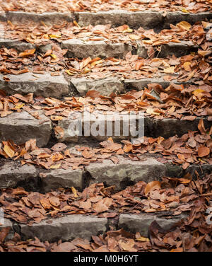 Beautiful orange autumnal leaves on stairs.Seasonal Concepy. - Stock Photo