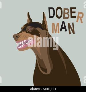 dog angry doberman face vector illustration flat style - Stock Photo