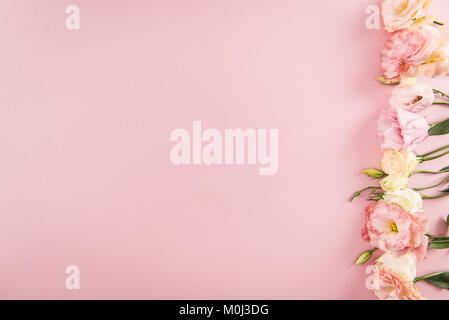 Top view of beautiful tender blooming eustoma flowers isolated on pink background  - Stock Photo
