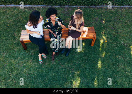 Top view of young women hanging out with drinks outdoors. Group of female friends sitting outdoors having party. - Stock Photo