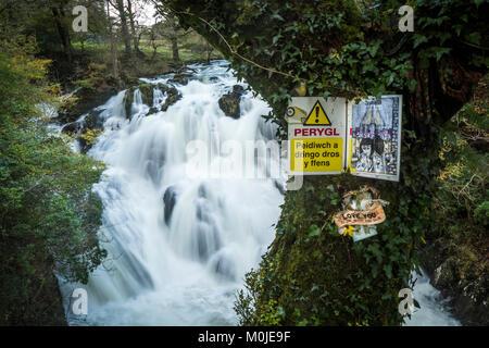 Swallow Falls is a name for the Rhaeadr Ewynnol, a multiple waterfall system in Wales, located on the Afon Llugwy - Stock Photo