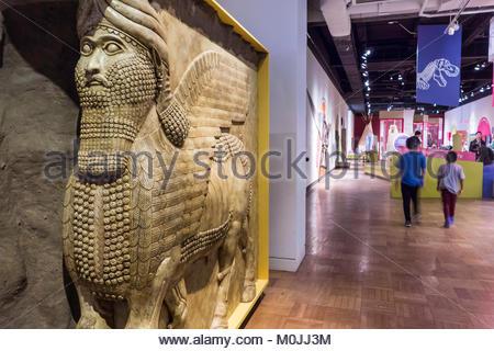 Royal Ontario Museum ROM Lamassu Aladlammu Assyrian winged bull with human male head, Toronto Ontario Canada - Stock Photo