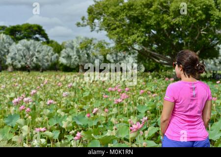 Women with pink sports top enjoying Anderson Park Botanic Gardens, Townsville, Queensland, Australia - Stock Photo