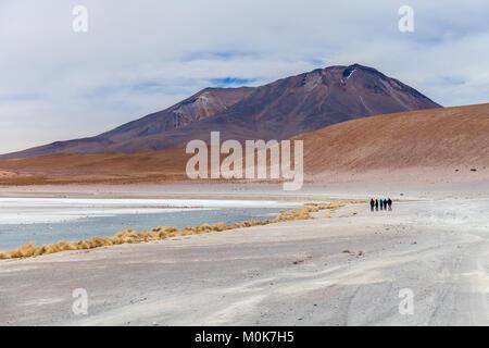 Laguna Hedionda located in the Bolivian altiplano near the Uyuni Salt Flat in Bolivia, South America Stock photo - Stock Photo