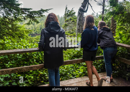 A mother and her two daughters stand on a viewing platform looking out to the lush rainforest; Ucluelet, British - Stock Photo