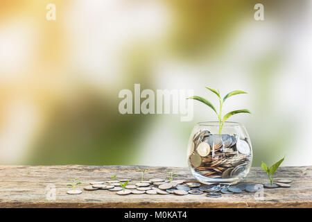 Investment concept. Growth plant on coins in clear glass bottle on wooden table with green blurred background and - Stock Photo