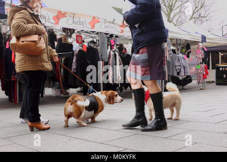 Woman with her Bassett on the High Street in the UK having a chat with a friend and her dog - Stock Photo