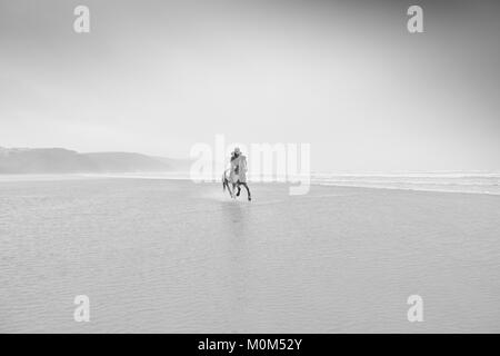 Horse rider riding from right to left through low tide, with noticeable water spray behind horse. Coast and overcast - Stock Photo