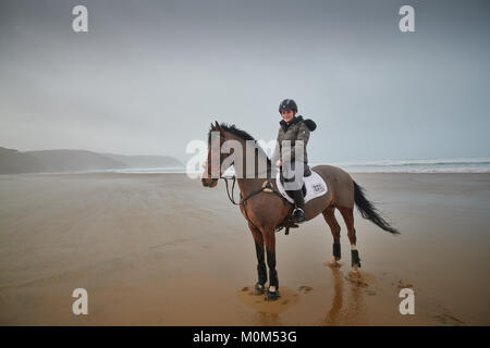 Female Horse rider standing stationary on  a beach at low tide, cliff line and sea visible in the background, as - Stock Photo