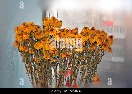 Withered bouquet of yellow chrysanthemums on the blurred background of the frozen window - Stock Photo