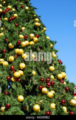 ... Gold And Red Baubles On A Large Christmas Tree Outside On A Sunny Day  Against A