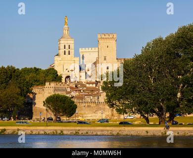 Avignon, Provence-Alpes-Côte d'Azur, France.  Palais des Papes.  Palace of the Popes seen across the Rhône river. - Stock Photo