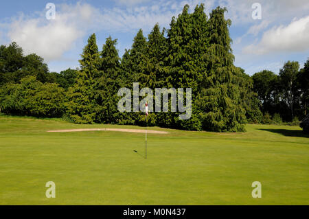 View across the 10th Green to bunker and trees, Hartley Wintney Golf Club, Hartley Wintney, Hampshire, England - Stock Photo