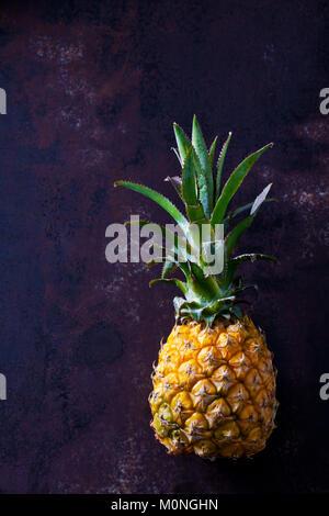 Baby pineapple on dark ground - Stock Photo