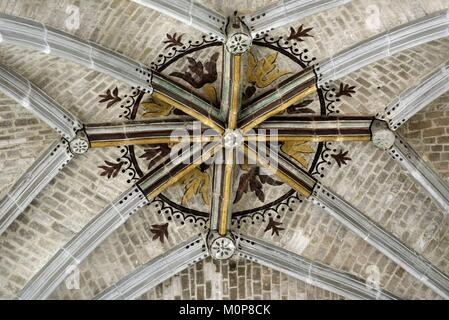 France,Yonne,Auxerre,Place Saint Pierre,Saint Pierre church dated 16th and 17th centuries,nave,keystone - Stock Photo