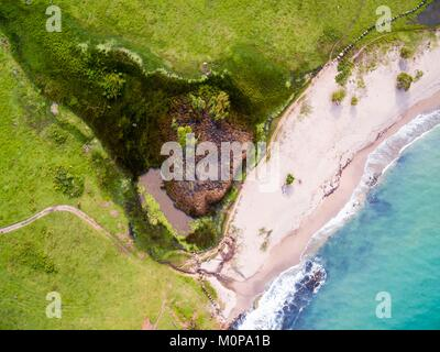 France,Caribbean,Lesser Antilles,Guadeloupe,Basse-Terre,Sainte-Rose,aerial view of the coast at l'Anse de Nogent - Stock Photo