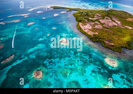 France,Caribbean,Lesser Antilles,Guadeloupe,Guadeloupe National Park,maritime heart area,aerial view of the Grand - Stock Photo