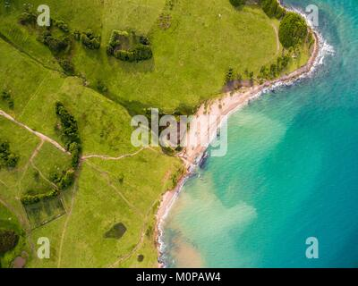 France,Caribbean,Lesser Antilles,Guadeloupe,Basse-Terre,Sainte-Rose,aerial view of the coast and its meadows where - Stock Photo