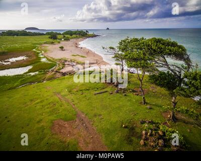 France,Caribbean,Lesser Antilles,Guadeloupe,Basse-Terre,Sainte-Rose,aerial view of the coast at l'Anse de Nogent,the - Stock Photo