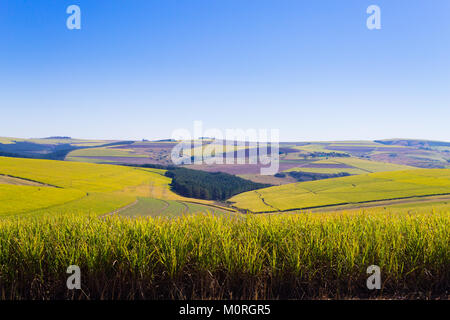 Valley of a Thousand hills landscape. Green hills panorama. South African landmark near Durban. - Stock Photo