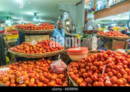 Tomaten  auf dem Zentralmarkt in Port Louis, Mauritius, Afrika   tomatoes Central Market Port Louis, Mauritius, - Stock Photo
