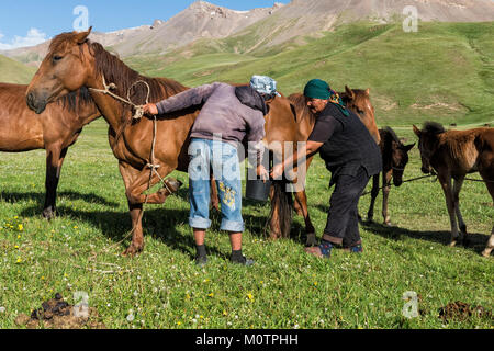 Couple of Kyrgyz nomads milking a mare on mountain pastures, Song Kol Lake, Naryn province, Kyrgyzstan, Central - Stock Photo