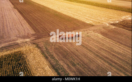 Aerial view of agricultural tractor with trailers in cultivated corn crop field during harvest season from drone - Stock Photo