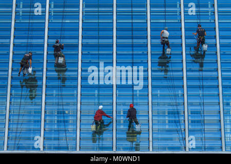 Window washers hanging from ropes, cleaning the side of a building. - Stock Photo