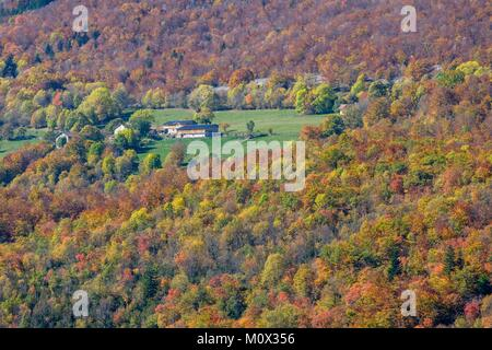 France,Isere,Vercors Regional Natural Park,surroundings of Rencurel,Coulmes forest in the fall - Stock Photo