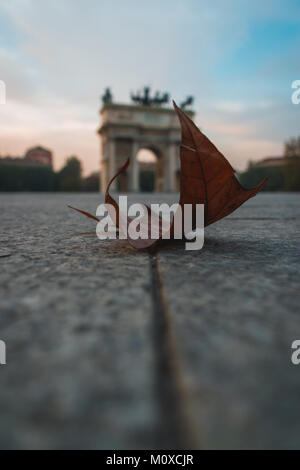 a leaf fallen on the ground near arco della pace, milan, italy - Stock Photo