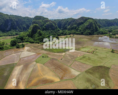 The karst mountain area in Leang Leang with rice field in the foreground. - Stock Photo