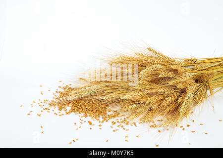 ears and grains of wheat on a light background. not isolated - Stock Photo