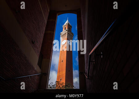 Joseph Chamberlain Memorial Clock Tower, 'Old Joe', the tallest freestanding clock tower in the world, presiding - Stock Photo
