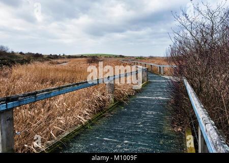 Essex,UK.Path in Rainham Marshes RSPB nature reserve next to Thames Estuary in Purfleet, Path through grass of  - Stock Photo