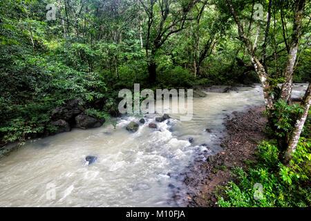 Muddy river running through primary rainforest, Tabin Wildlife Reserve, Sabah, Borneo, Malaysia - Stock Photo
