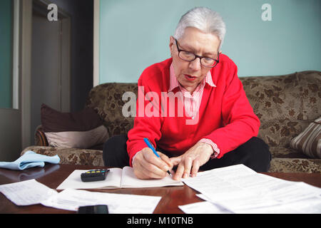 Satisfied with her monthly financial calculations - Stock Photo
