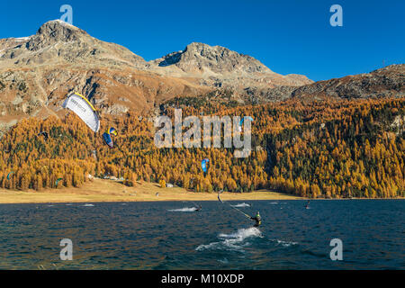 Wind surfing on Lake Silvaplana with fall foliage color in the larch trees in the Engadin Valley, Graubuden, Switzerland, - Stock Photo