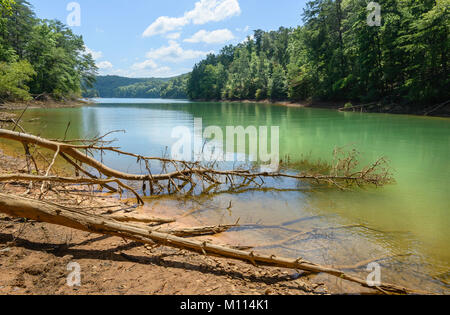 A lagoon on a peaceful summer morning flanked by trees under blue sky in Nantahala National Forest near Blue Ridge, - Stock Photo
